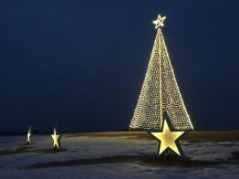 Kinnard_Farms-KF_Tree_and_Stars2