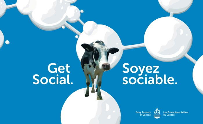 Get Social. Get with the Herd.  And Let's Talk Dairy Research Shop!