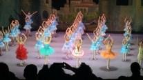 Sophia Ballett 17-01 (3)