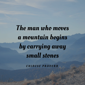 Chines Proverb. The man who moves a mountain begins by carrying away small stones.