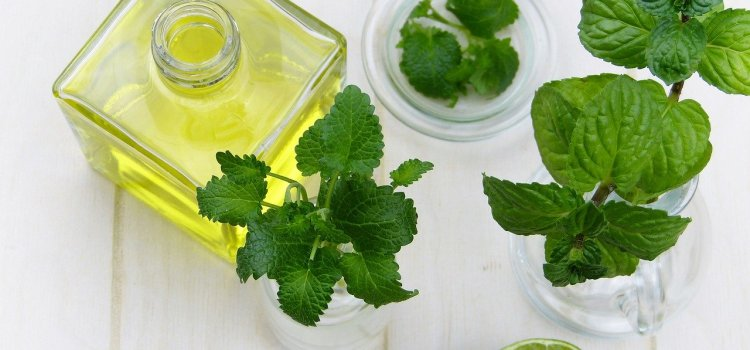 a glass jar of Fresh Mint simple syrup recipe mix. Mint leaves are surrouning the bottle. It is sitting on a white table.