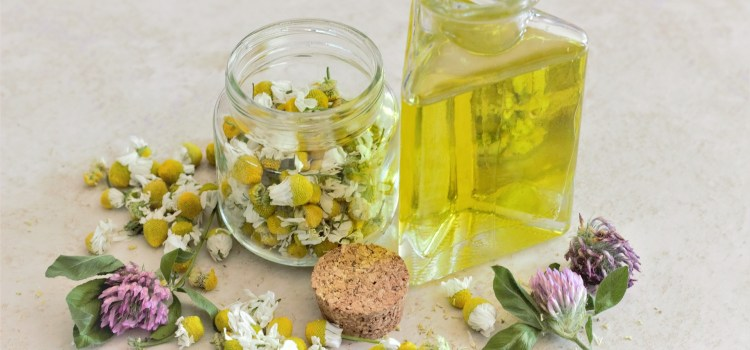 Chamomile a lemon simple syrup in a triangle shaped glass bottle. Surrounded by dried chamomile flowers.