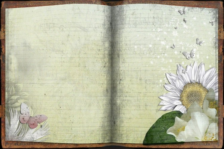 Old fashened Journal with daisies in the corner of pages. For 19 gardening tips.