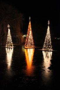 December - Illuminations at Botanica, Wichita