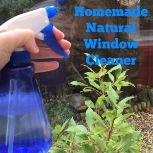 homemade natural window cleaner, how to make your own window cleaning solution, natural homekeeping remedies, green cleaning, homekeeping from daisies and pie