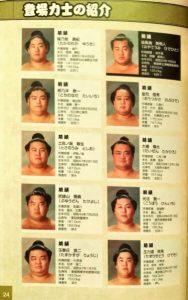 「日本相撲協曾公認 日本大相撲 本場所激闘編」キャラクター3