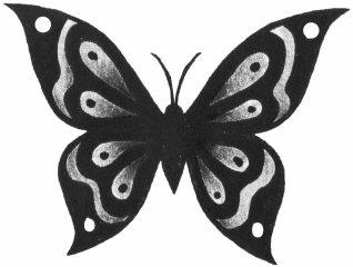 Butterfly B & G 002