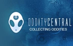 Odditycentral