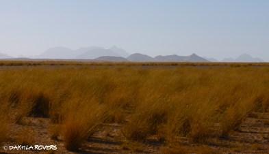 desert week #DakhlaRovers #desert #Sahara