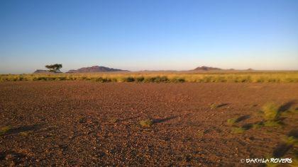 #DakhlaRovers #desert #savannah #safari