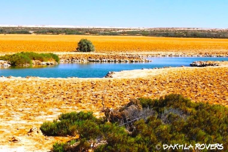 #DakhlaRovers #desert #Imlili