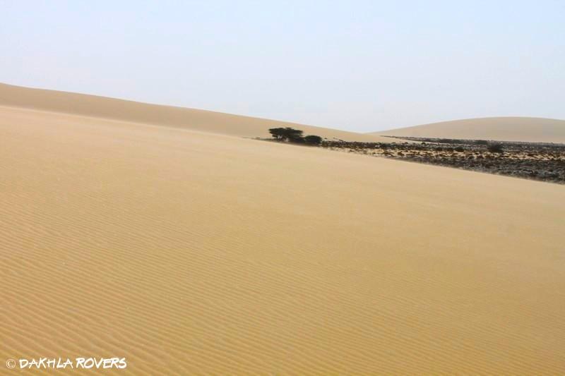 #DakhlaRovers #Dakhla slow #dunes