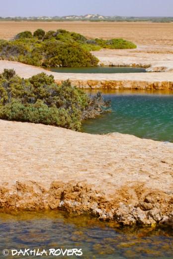 #DakhlaRovers #desert Imlili