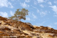 #DakhlaRovers #desert