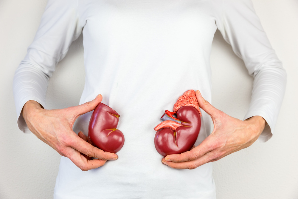 Chronic Kidney Disease Diet: Foods to Eat, Foods to Limit