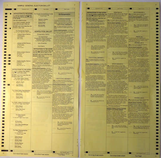 South Dakota District 3 Sample ballot (click to view full-size image!)