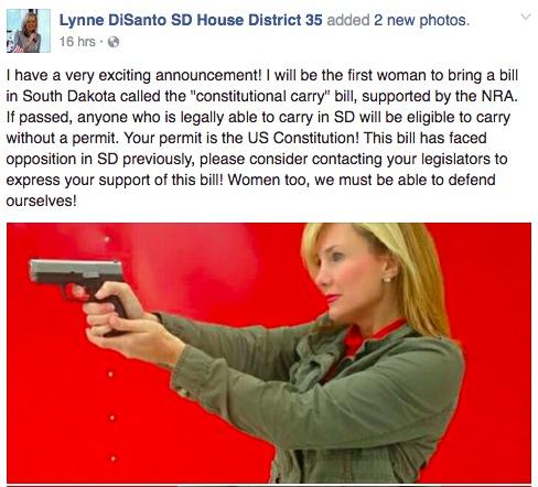 Rep. Lynne diSanto, Facebook post, 2016.11.18
