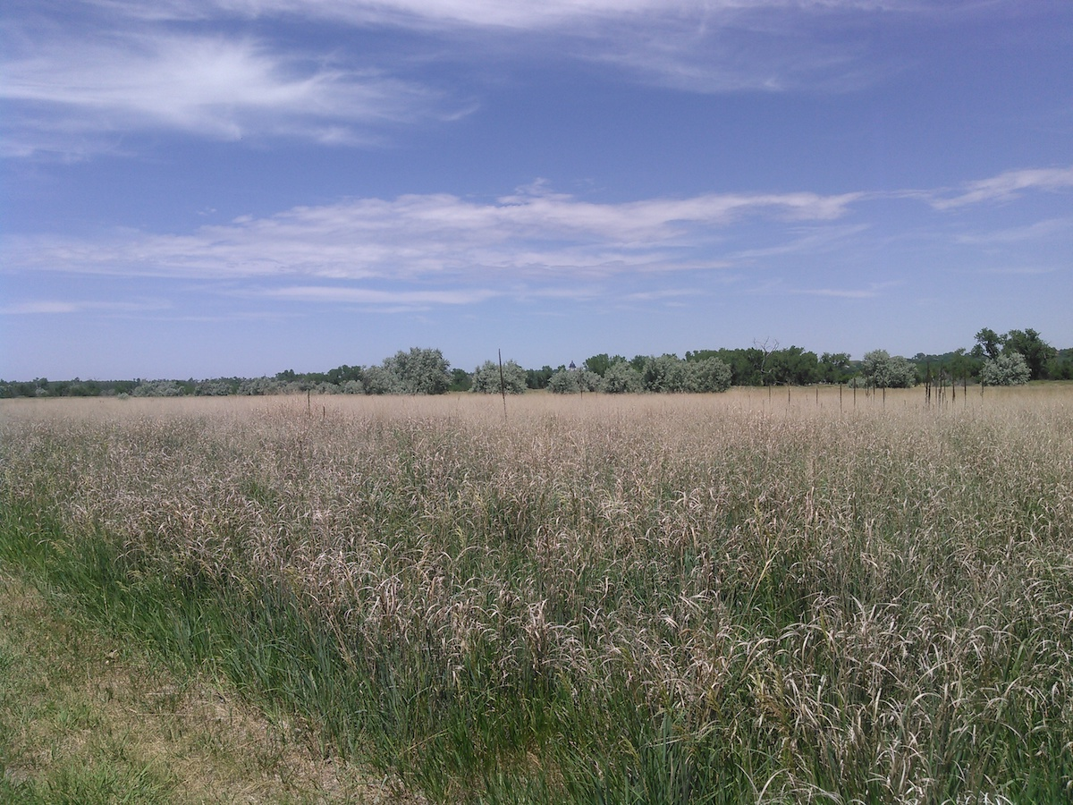South dakota spink county doland - View Of The Capitol During My Midday Run On La Framboise Island Pierre South