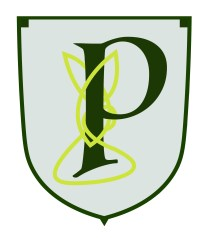 paddys-pub-logo-p-knot-gray-01