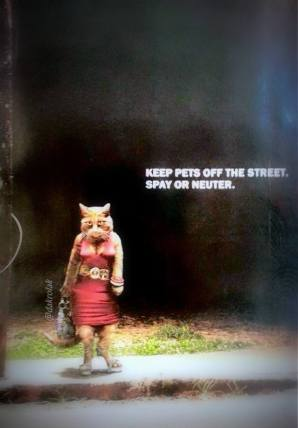 enahnced meme by DAKrolak Keep Pets Off the Street. Spay or Neuter.