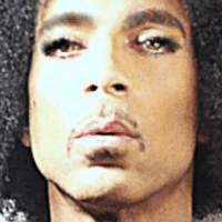 PRINCE: One Year