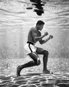 RIP Muhammad Ali (2)