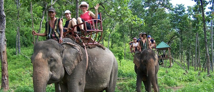 Dalat Elephant Riding