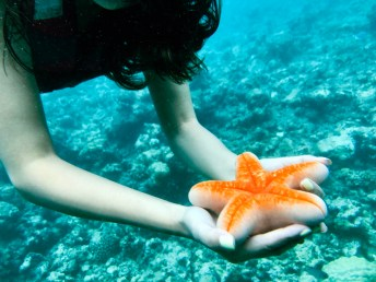 Feryna Wazheri's trip to Maldives (19)