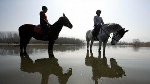 جولات استكشاف الطبيعة على ظهور الخيول