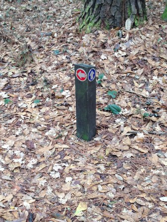 Great markers