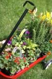 Radio Flyer Planter