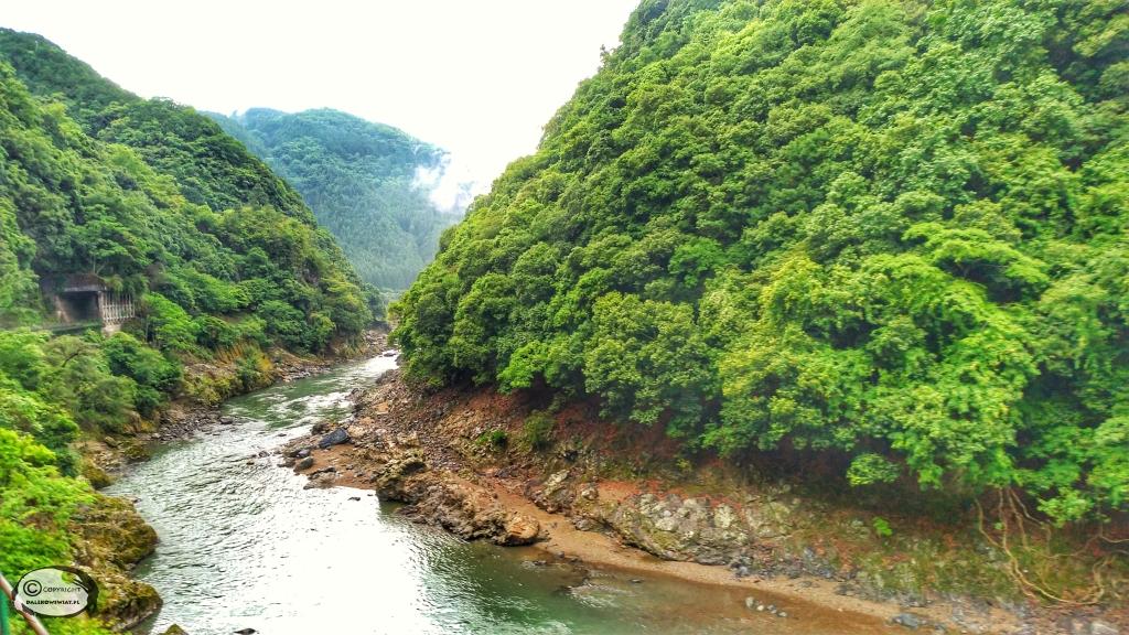 Rzeka Oi