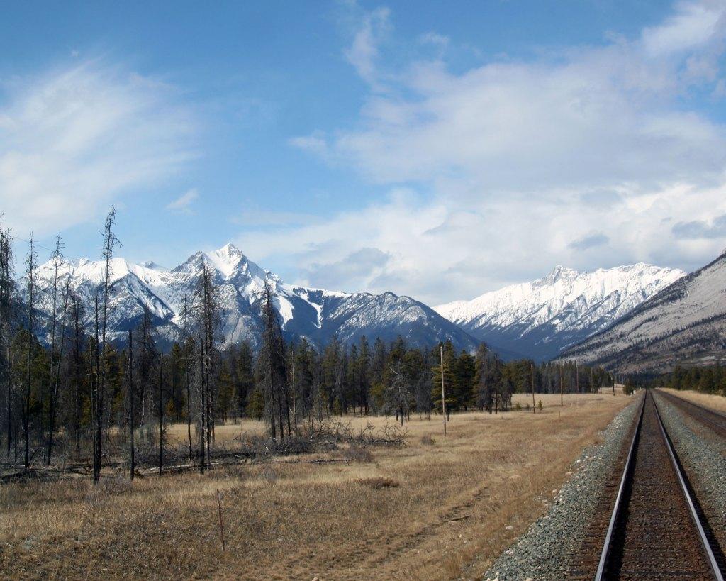 Train-image-4-72