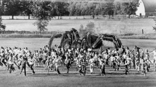 SPIDERS!