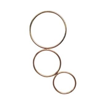circle_of_life1