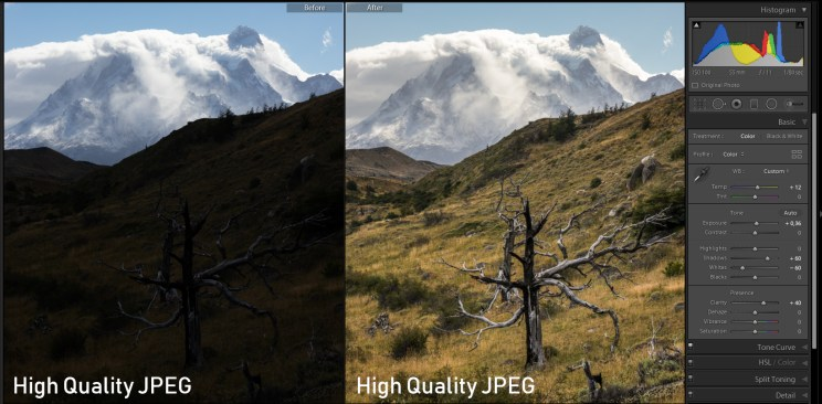 Then I took the highest quality JPEG and did exactly the same edit. The result was shockingly good. However, very dark areas weren't recovered as good as in RAW. Also, the white balance was not as precise. When I tried the same with low-quality JPEGs, the data loss cumulated with each extra edit.
