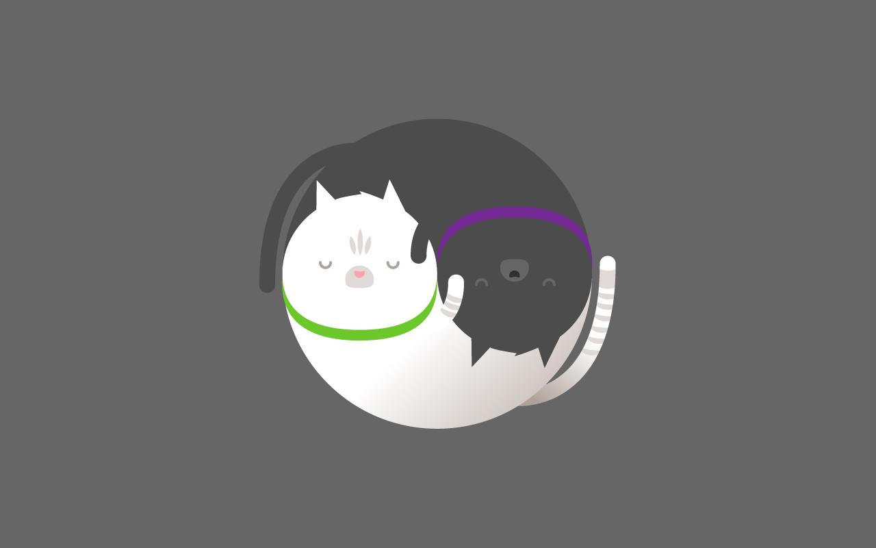 tema13-gatos-blog