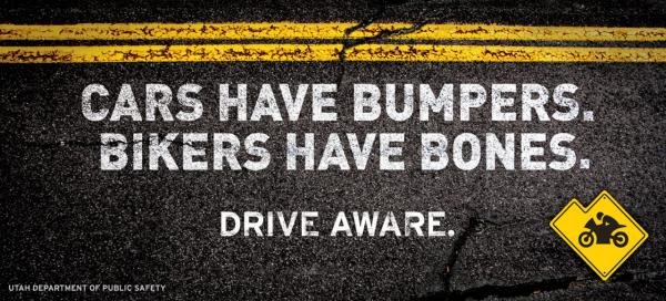 bumpersnbones