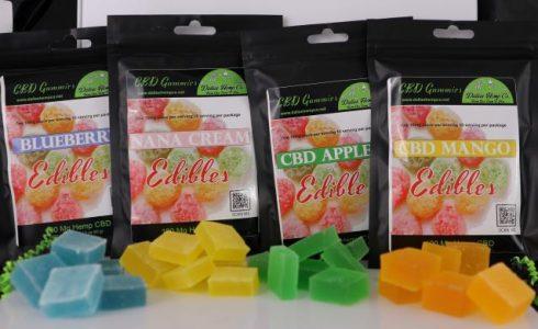 Assorted CBD Infused Sugar-Free Gummies by Dallas Hemp Company