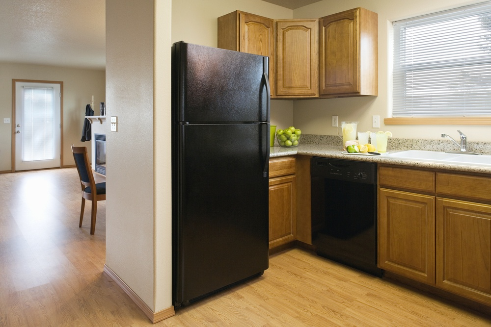 fridge_refrigerator_kitchen_shutterstock_50008699