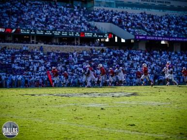 Dallas Sports Fanatic (72 of 80)