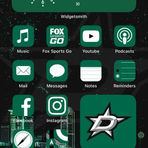 Dallas Stars 50 Icon Pack - Home