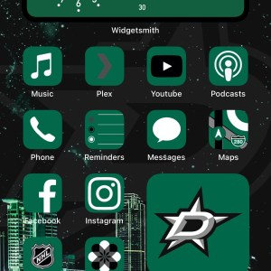 Dallas Stars icon starter pack - home theme