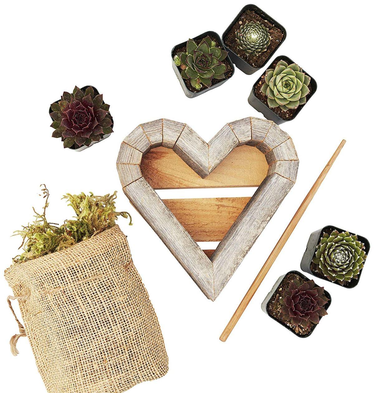 Vertical Succulent Heart Garden