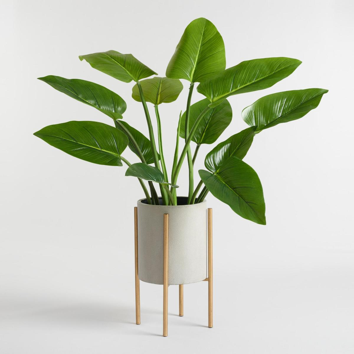 Elevated Modern Planter
