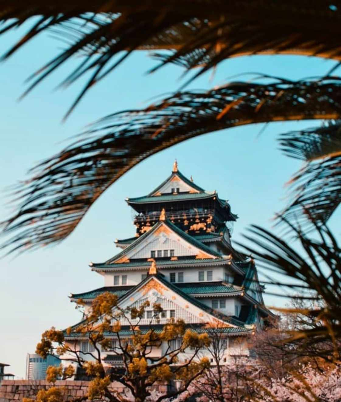 20 Things To Do In Japan For A Complete Experience