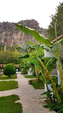 best-hotel-in-dalyan-riverside-hotel-dalyan-27