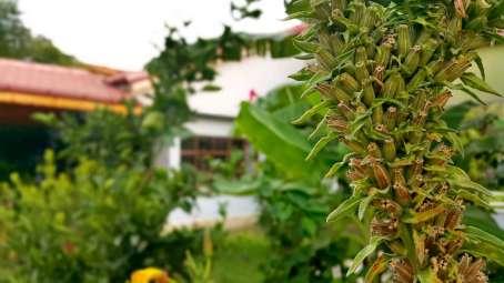 best-hotel-in-dalyan-riverside-hotel-dalyan-37