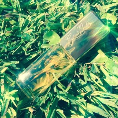 Estee Lauder Private Collection perfume dalybeauty