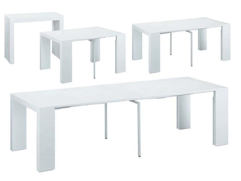 salons jardin table extensible